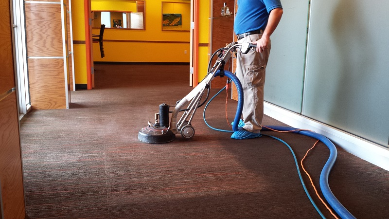 Carpet Cleaning In New Orleans Carpet Ideas