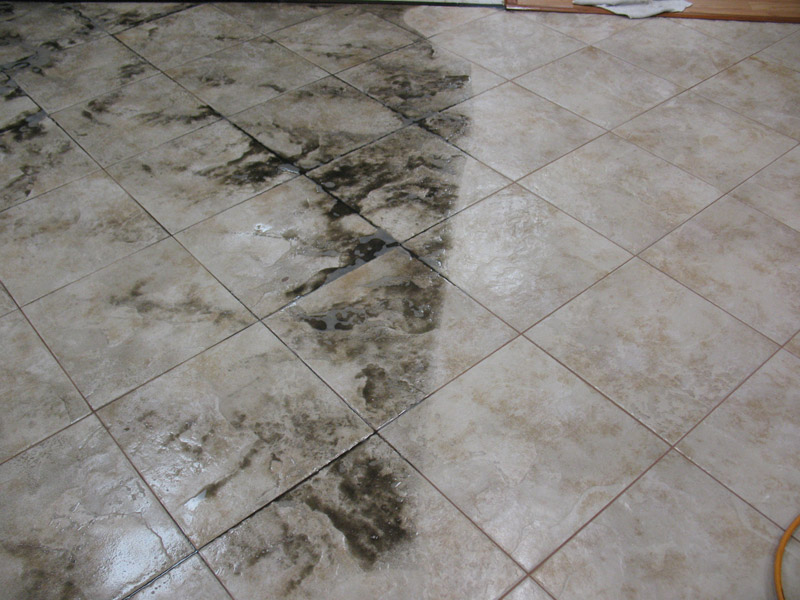 Tile And Grout Cleaning New Orleans Dg Carpet Cleaning